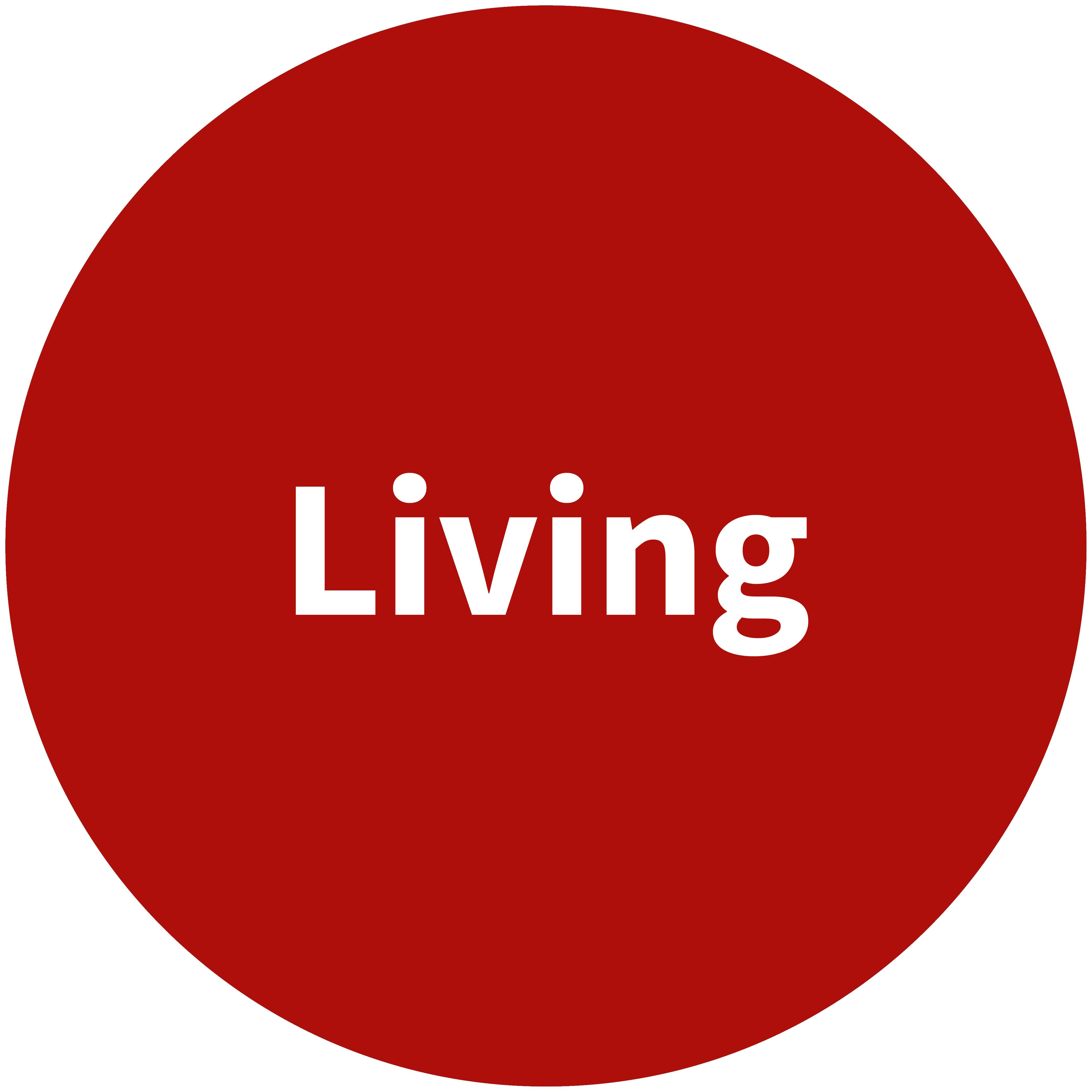 Visit the Brunata.One living webpage